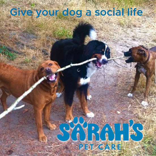 image of Sarahs Pet Care LLC